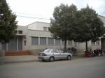 EDUCACION PRIMARIA, Instituto ICES, venado tuerto